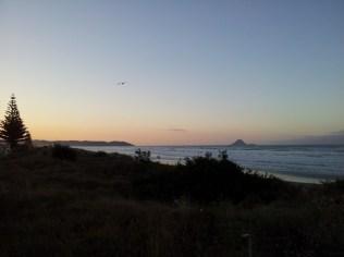 Ohope Beach - Sunset mit Möve