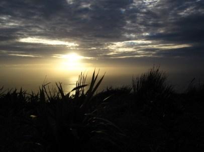 Cape Reinga - oben im Norden