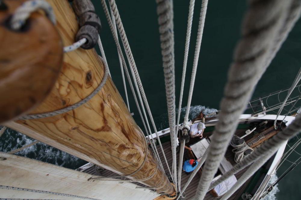 Hoch auf den Mast