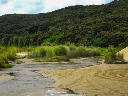 Reifenspuren im Sand von Te Paki
