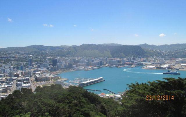 Aussicht auf Wellington von Mt. Victoria
