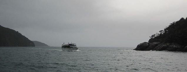 Grenze zwischen Milford Sound und Tasman See