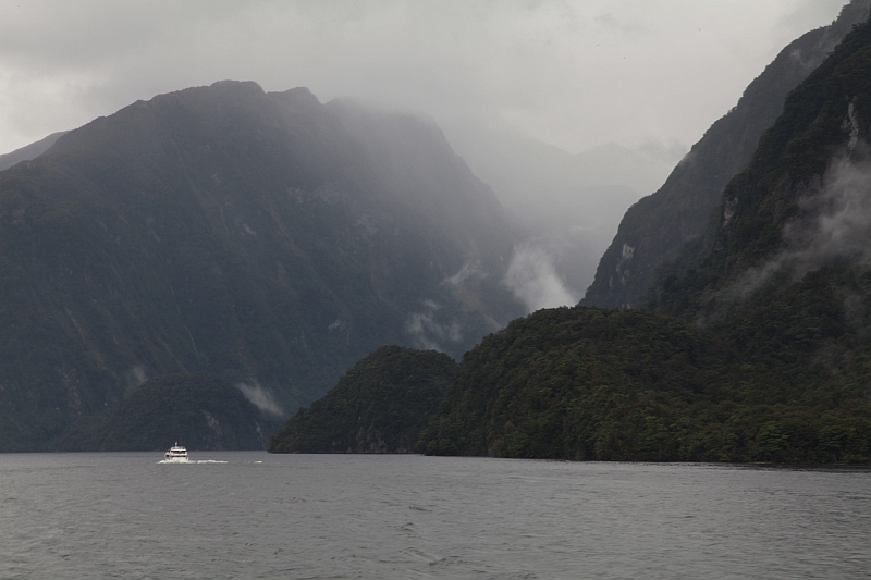Sicht von Deep Cove in den Doubtful Sound