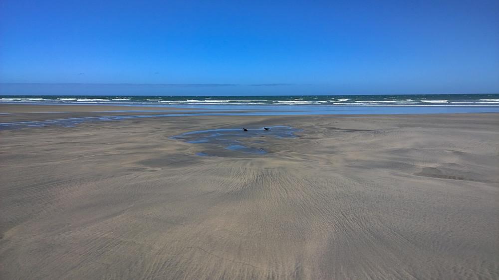 Strand mit Blick auf die Tasman See