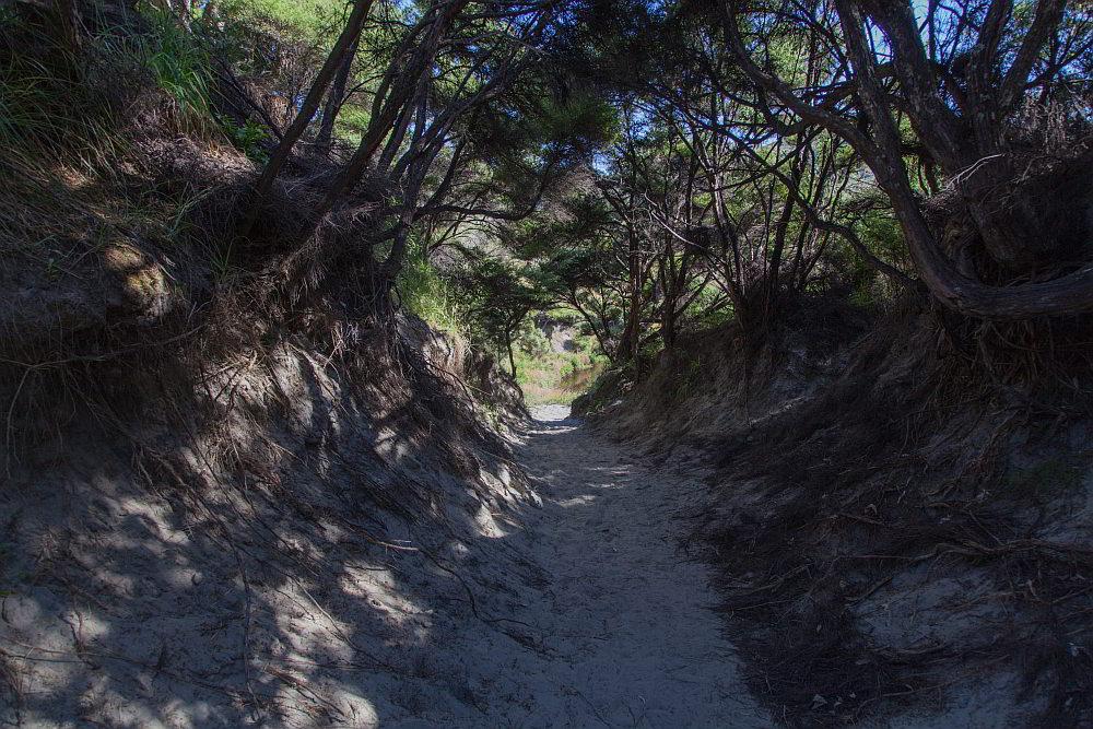 Weg durch einen Hohlweg zu Strand