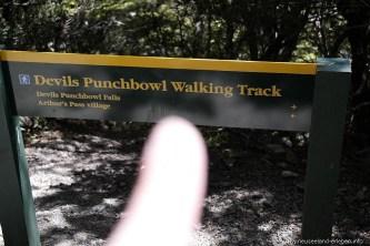 Auf zum Devils Punchbowl in den Nähe des Arthur's Pass Village