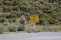Nur noch 62 Kilometer bis zum Arthur's Pass