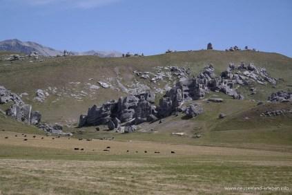 Castle Hill, Arthur's Pass, Neuseeland