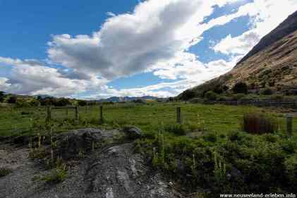 Typische neuseeländische Landschaft