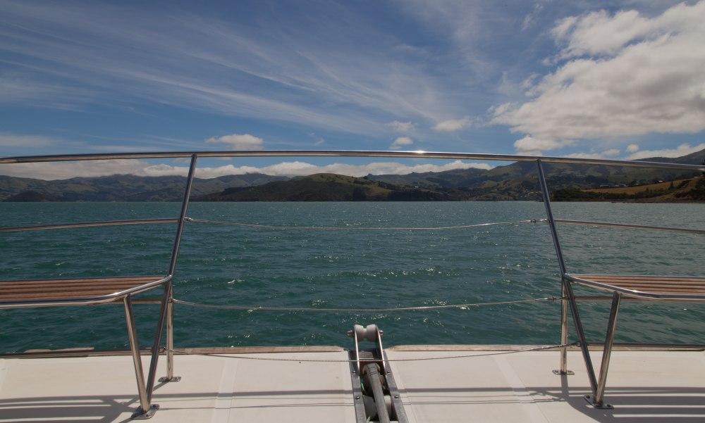 Aufs Boot und raus aufs Meer. Jetzt heißt Augen auf und Delphine suchen.