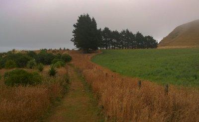 Kaikoura Peninsula Walkway im Neben und in den Wolken