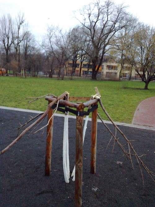 Abgebrochene Bäume und Äste