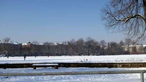 Unterm Schnee, da wartet schon die Wiese.