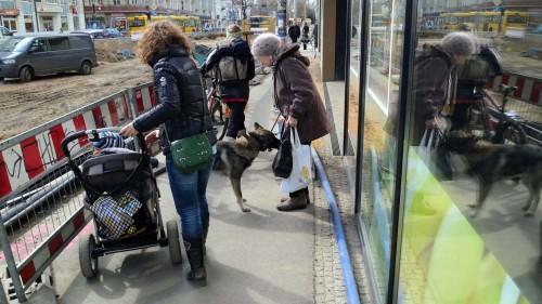 Heldin des Tage - die ältere Dame zieht mutig den ihr fremden Hund zur Seite, damit Mutter und Kind gefahrlos durchkommen.