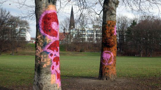 bunte Bäume auf dem Alaunplatz