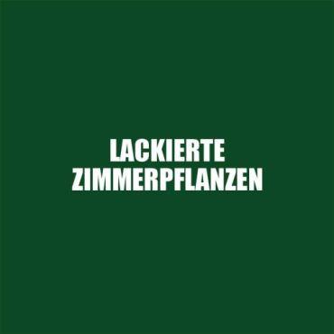 """Finissage """"Lackierte Zimmerplfanzen"""""""