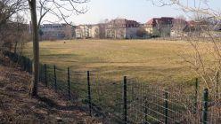Der Russensportplatz am Morgen - beruhigend grün und eingezäunt.