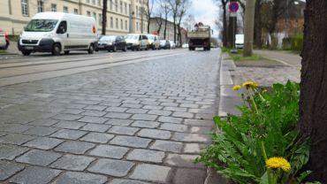 Königsbrücker Straße wird am Wochenende teilweise gesperrt.