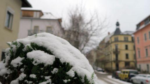 Süß: Hohnsteiner Straße