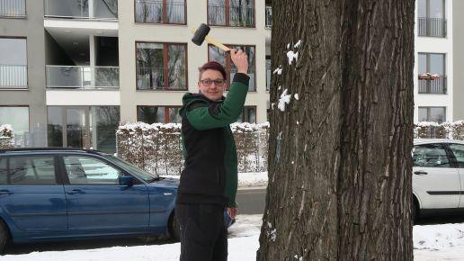 Eine Mitarbeiterin des Regiebetrieb Zentrale Technische Dienstleistungen schwingt den Schonhammer.
