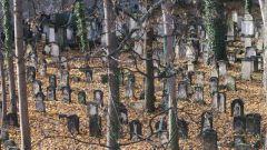 Alter Jüdischer Friedhof im Herbst 2016 - Foto: Archiv