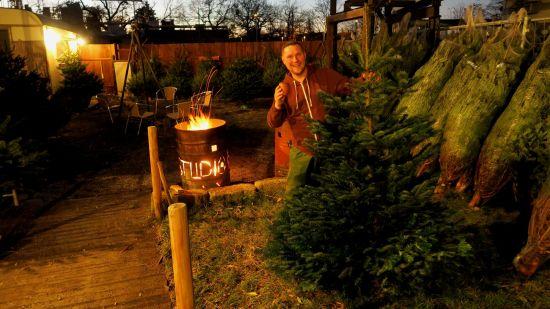 Top Weihnachtsbaumverkäufer: Sven Hellmich