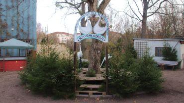 Gans- und Schwanenparadies an der Prießnitzstraße