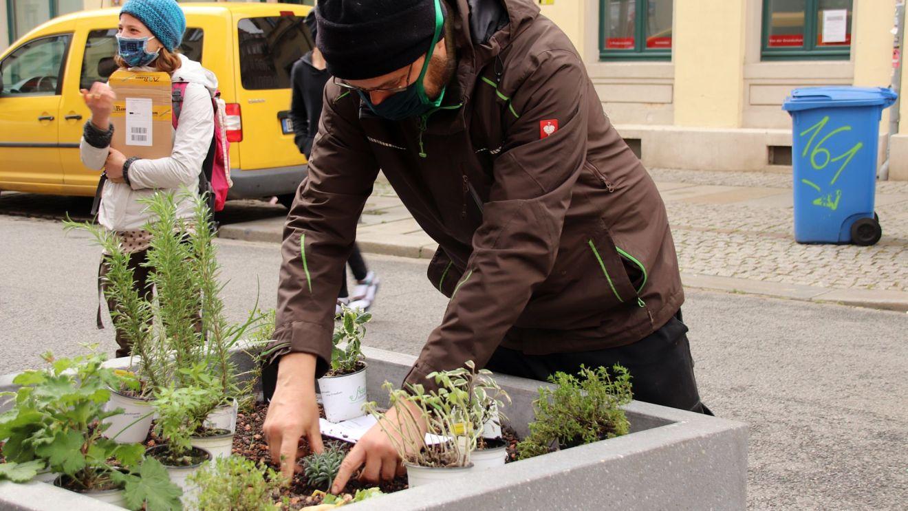 Am Sonnabend wurden die ersten Pflanzen gesetzt - hauptsächlich Kräuter wie Minze, Oregano und Thymian.
