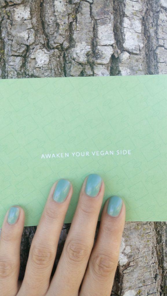 Vegan Vibe box