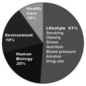 FIGURE: Pie Graph demonstrating the social determinants that contribute to health status