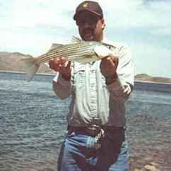 Fishing Cooler Chair Staples Turcotte Brown Nevadadventures Region Iii, Lake Mead, Nevada & Arizona Sides, Striper, Catfish Story.