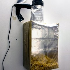 Culture Sculpture #3: Particle Accelerator (Prototype) // Cardboard Box, Polyurethane, Tape, Hairdryer, Cornflakes & Rice Crispies // 35 x 70 x 25 cm // 2009