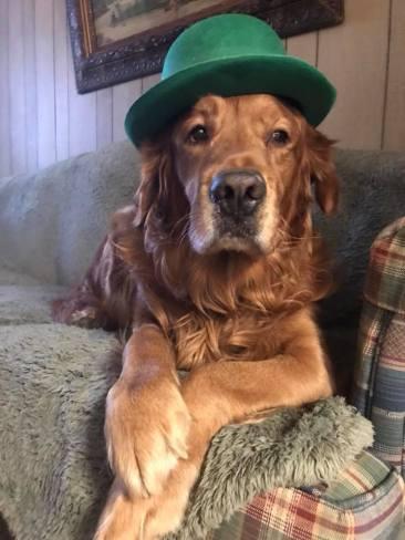 Bean in green top hat