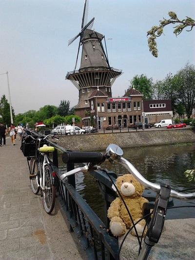 Never Ending Honeymoon | Windmills in Amsterdam, The Netherlands