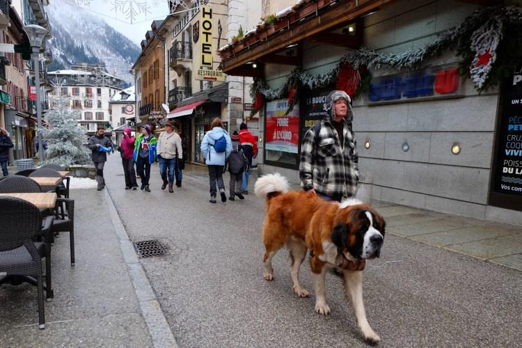 DSCF2024 dogs on Doc Paccard websize