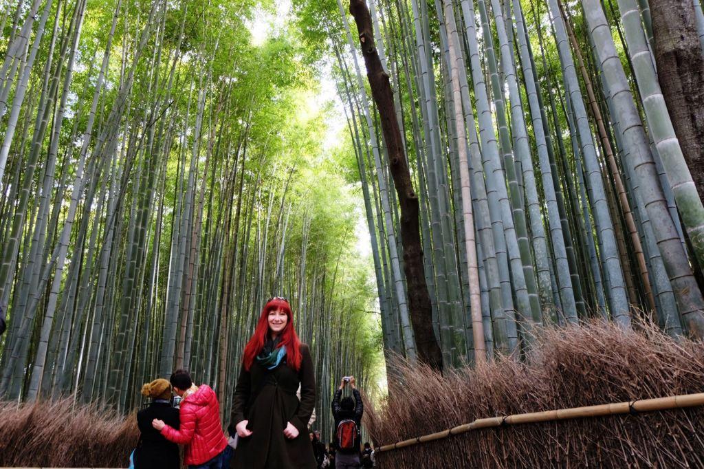 Kyoto Arashiyama Bamboo Grove Jacqui