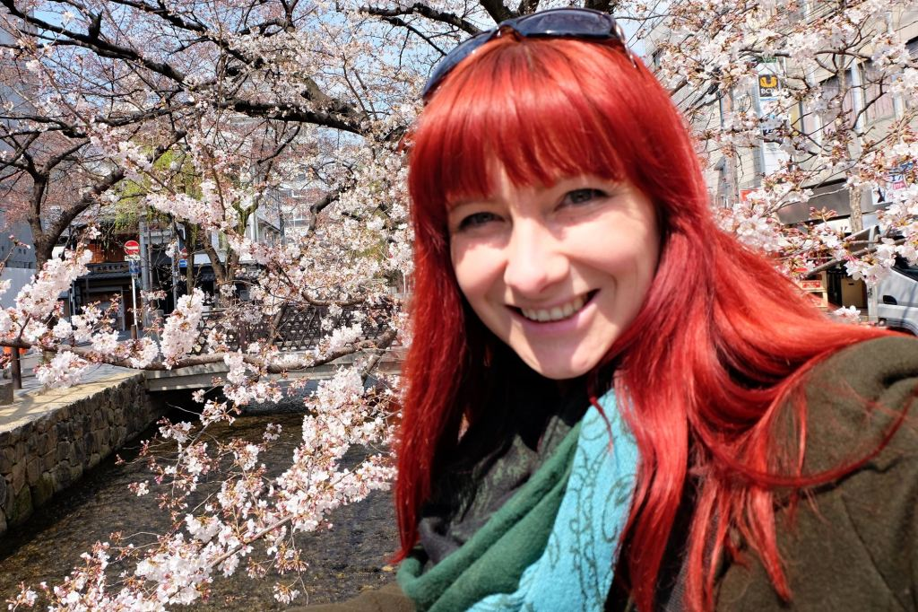 Kyoto Pontocho cherry blossoms Jacqui