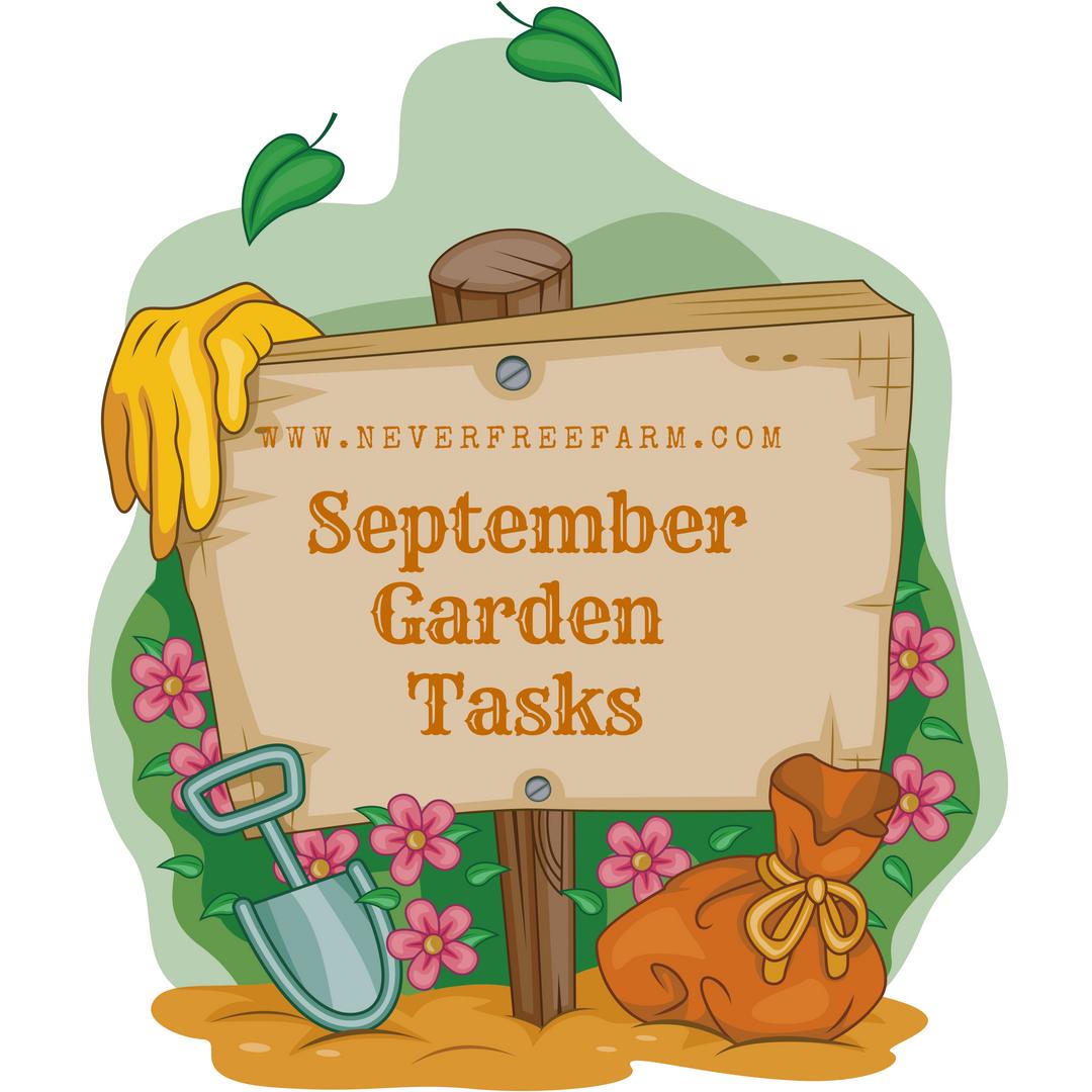 September Garden Tasks for Zones 7-8 (In The PNW)