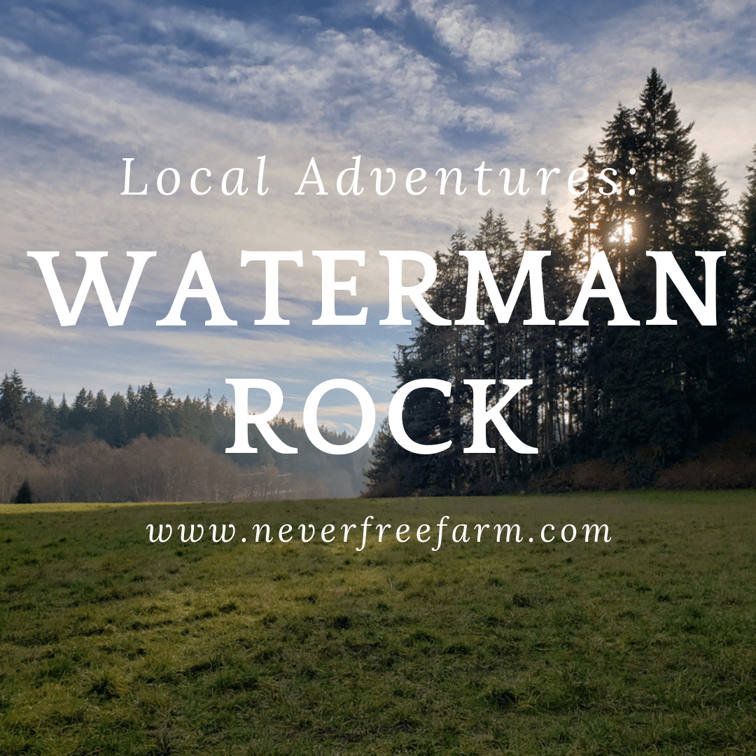 Local Adventures: Waterman Rock