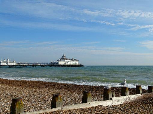 Eastbourne Seagulls