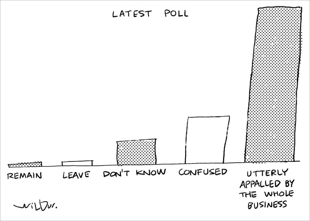 A clear case for 'Remain' in the EU referendum vote