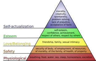 Maslow_hierarchy_of_needs