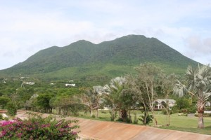 : Some of Nevis' exquisite flora and fauna: a view of the island's pristine environment from the Four Seasons Resort