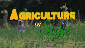 "The logo for ""Agriculture In Style"", a programme showcasing agriculture on Nevis which airs on international television network Tempo"