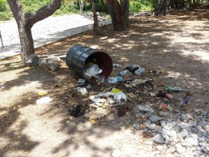 One of the garbage bins overturned by marauding animals at the Bath Stream grounds