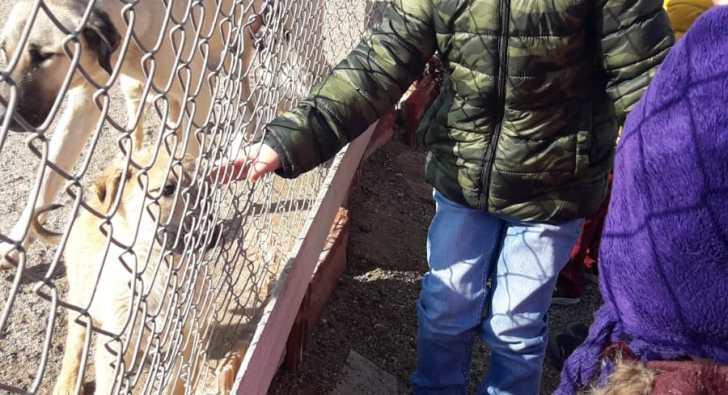Anaokulu öğrencileri Hayvan Barınağını ziyaret etti
