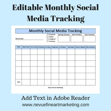 Editable Monthly Social Media Tracking