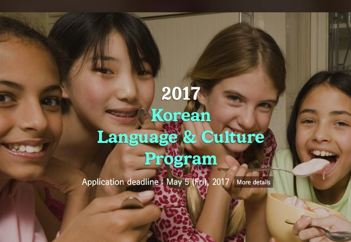 Summer Scholarship Opportunity for Korean Adoptees