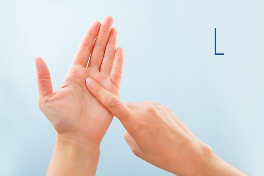 British Sign Language L