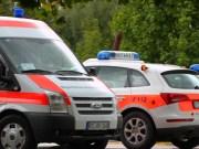 13-09-2013 oberalgau fischen grundschule wespen-attacke verletzte poeppel new-facts-eu20130913 titel